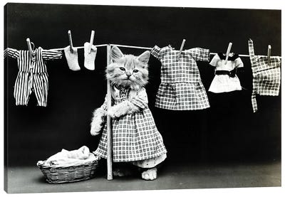 Kitty Laundry Canvas Art Print
