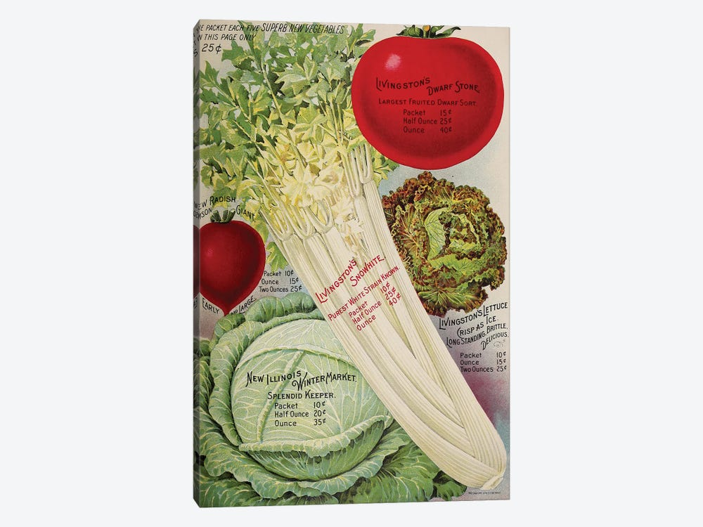 Livingston's Veggies by Vintage Apple Collection 1-piece Canvas Wall Art