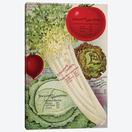 Livingston's Veggies Canvas Print #VAC1787} by Vintage Apple Collection Canvas Print