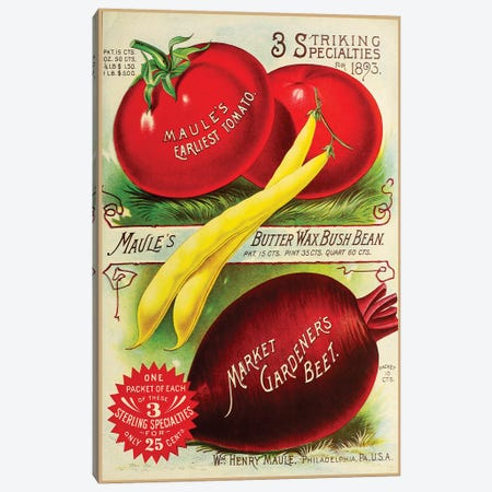 Maule Tomatoes, 1893 Canvas Print #VAC1824} by Vintage Apple Collection Canvas Art