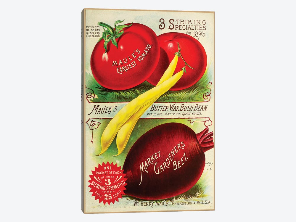 Maule Tomatoes, 1893 by Vintage Apple Collection 1-piece Art Print