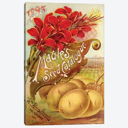 Maule's Seed, 1893 Canvas Print #VAC1829} by Vintage Apple Collection Canvas Print