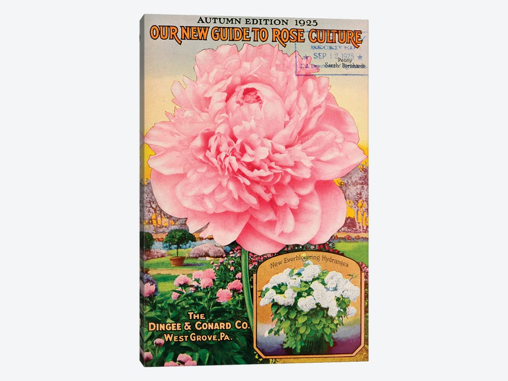 Our New Guide to Rose Culture, 1925 by Vintage Apple Collection 1-piece Canvas Art