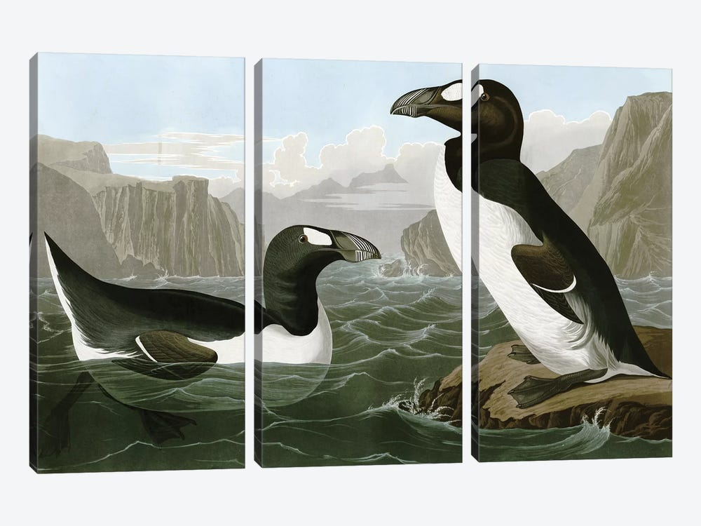 Penguins by Vintage Apple Collection 3-piece Canvas Wall Art