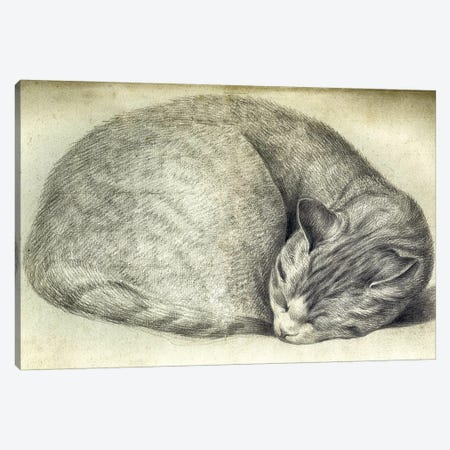 Sleeping Cat Canvas Print #VAC2012} by Vintage Apple Collection Canvas Wall Art