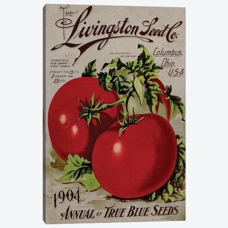 The Livingston Seed Co., Tomatoes, 1904 Canvas Print #VAC2058} by Vintage Apple Collection Canvas Art