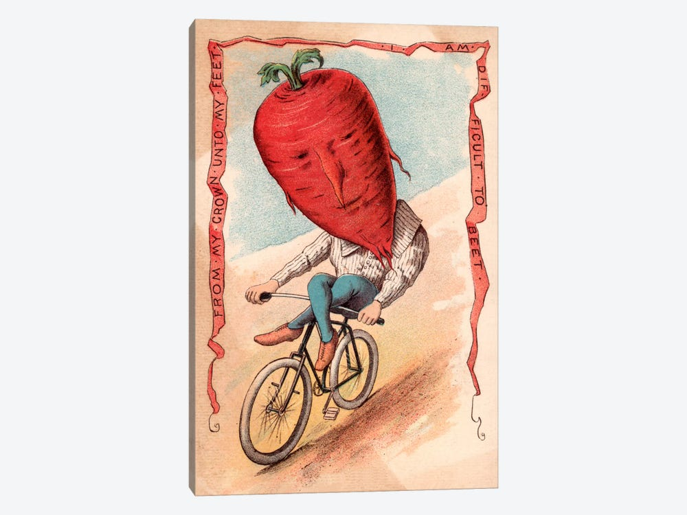Bike Beet by Vintage Apple Collection 1-piece Canvas Wall Art