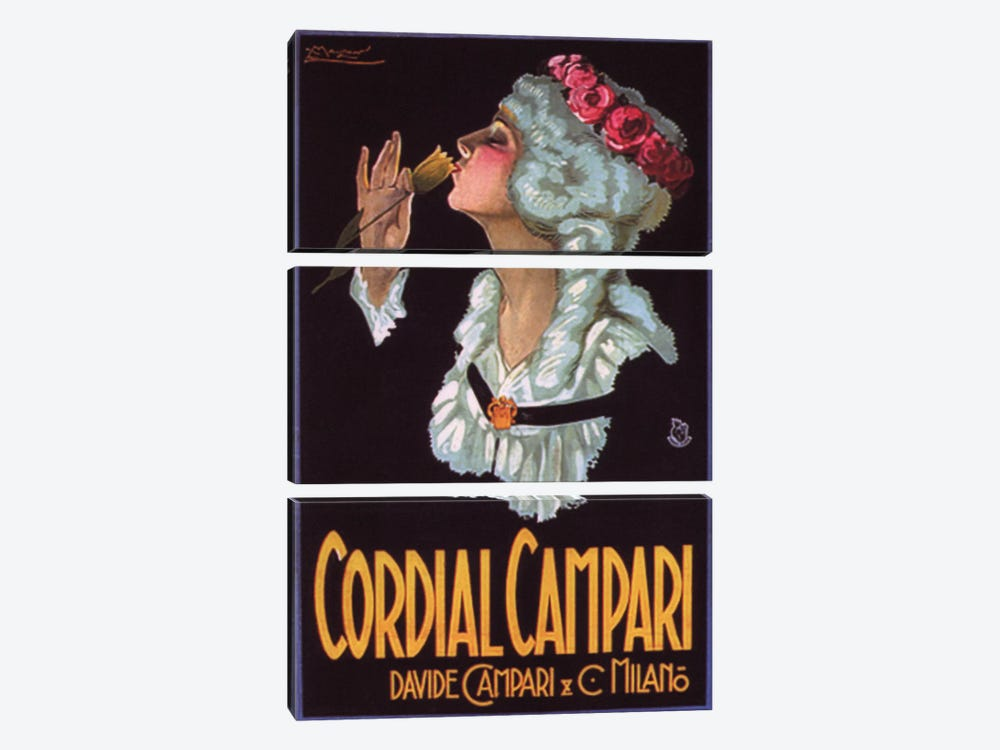 Cordial Campari #2 by Vintage Apple Collection 3-piece Canvas Wall Art