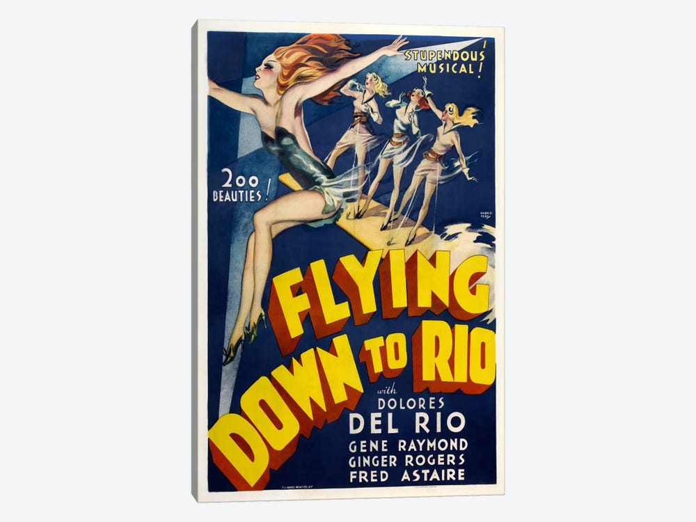 Flying Down To Rio by Vintage Apple Collection 1-piece Canvas Wall Art