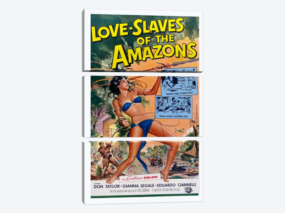 Love Slaves of the Amazons by Vintage Apple Collection 3-piece Canvas Art