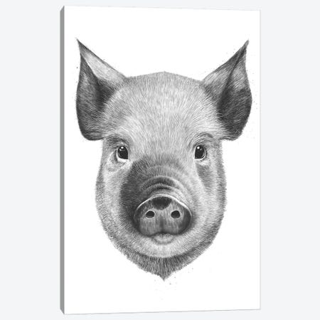 Pig Boy Canvas Print #VAK107} by Valeriya Korenkova Canvas Art