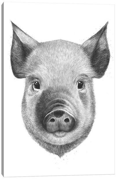 Pig Boy Canvas Art Print