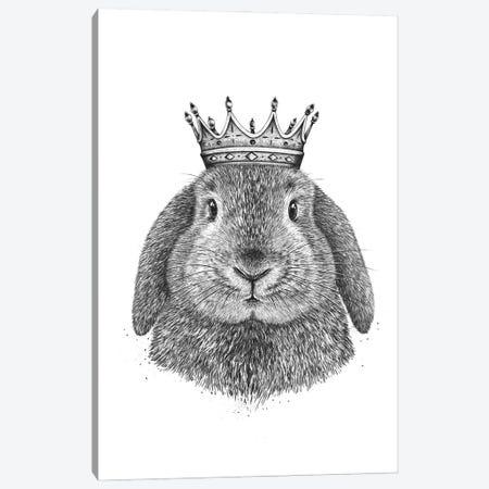 King Rabbit Canvas Print #VAK110} by Valeriya Korenkova Canvas Art