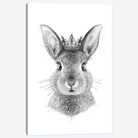 Queen Rabbit Canvas Print #VAK111} by Valeriya Korenkova Canvas Wall Art