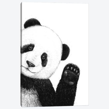 Panda Canvas Print #VAK116} by Valeriya Korenkova Art Print
