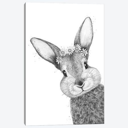 Rabbit With Chamomiles Canvas Print #VAK121} by Valeriya Korenkova Art Print