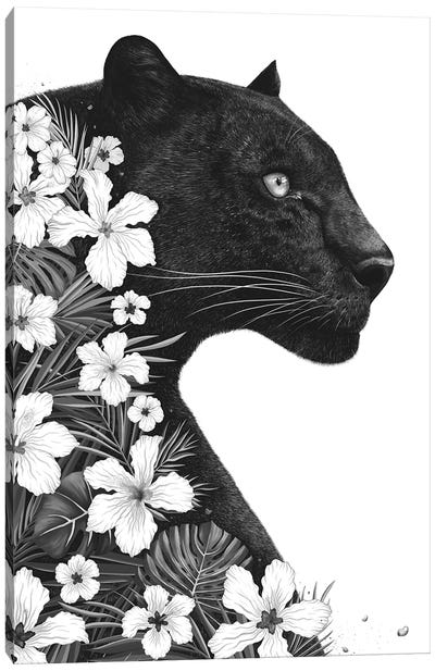 Panther With Flowers Canvas Art Print