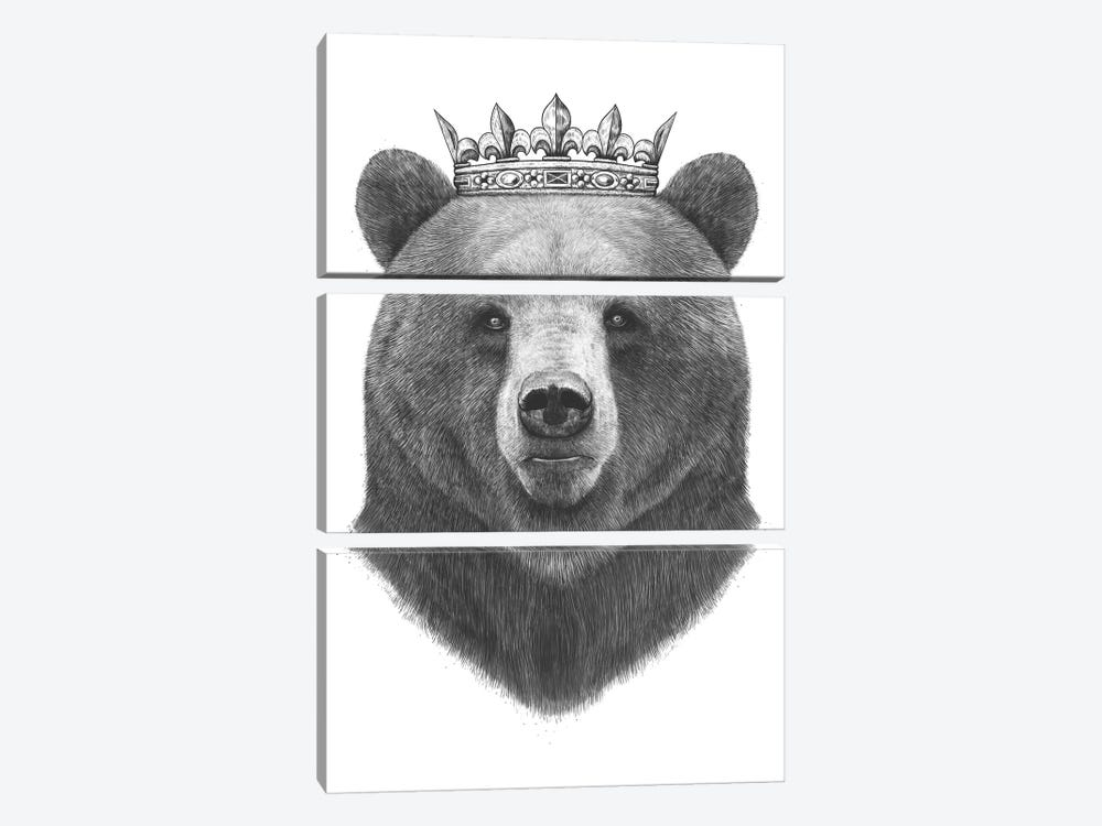 King Bear by Valeriya Korenkova 3-piece Canvas Art Print