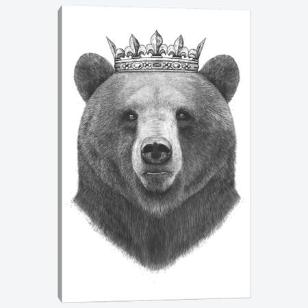 King Bear Canvas Print #VAK12} by Valeriya Korenkova Canvas Wall Art