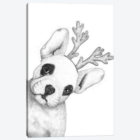Christmas French Bulldog Canvas Print #VAK140} by Valeriya Korenkova Canvas Art Print