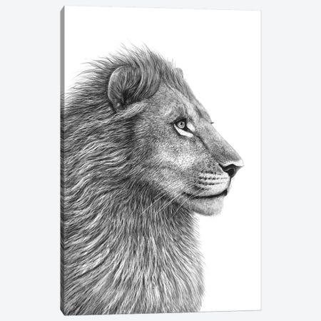 Lion Canvas Print #VAK1} by Valeriya Korenkova Canvas Art