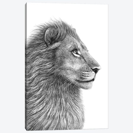 Lion Canvas Print #VAK1} by Valeriya Korenkova Canvas Art