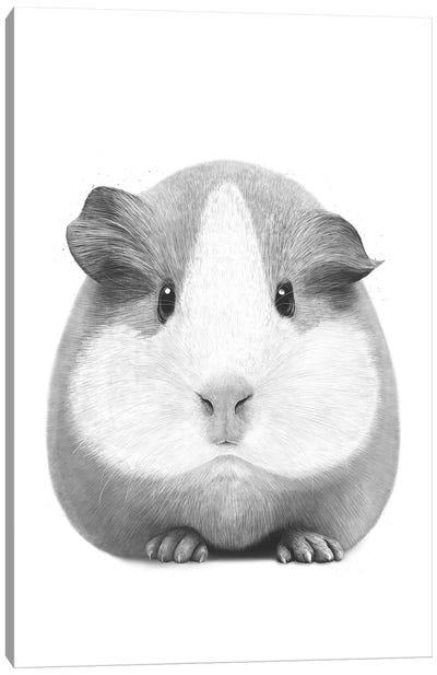 Guinea Pig Girl Canvas Art Print