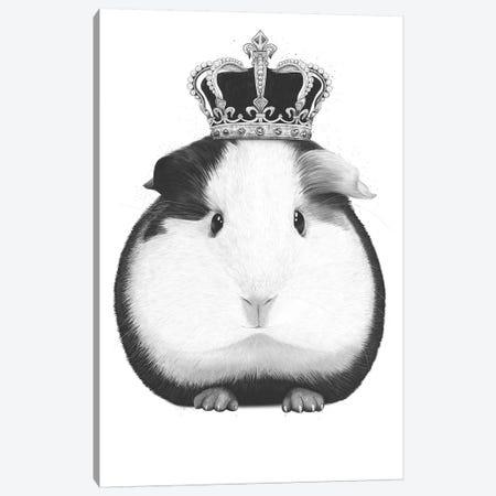 Guinea Pig King 3-Piece Canvas #VAK28} by Valeriya Korenkova Canvas Art Print