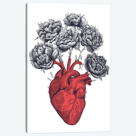 Heart With Peonies 3-Piece Canvas #VAK30} by Valeriya Korenkova Canvas Artwork