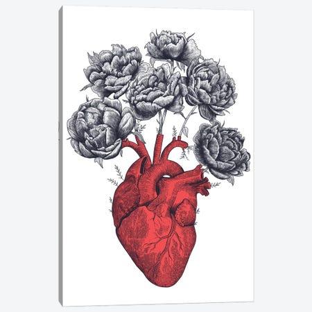 Heart With Peonies Canvas Print #VAK30} by Valeriya Korenkova Canvas Artwork