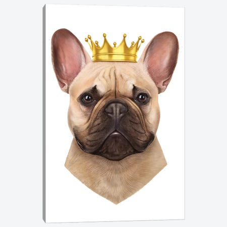 French Bulldog Canvas Print #VAK35} by Valeriya Korenkova Canvas Print