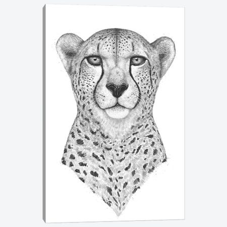 Cheetah 3-Piece Canvas #VAK37} by Valeriya Korenkova Art Print