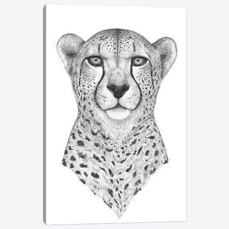 Cheetah Canvas Print #VAK37} by Valeriya Korenkova Art Print