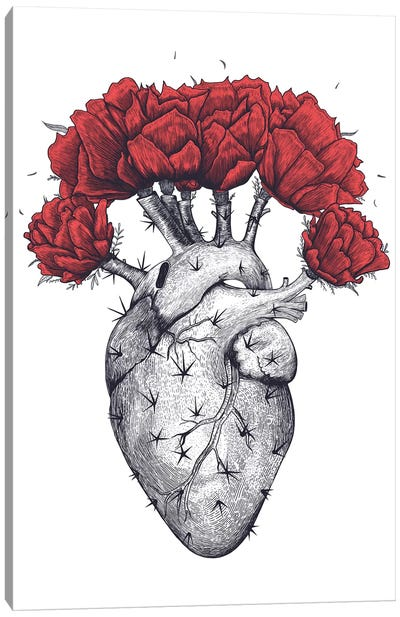 Cactus Heart Canvas Art Print