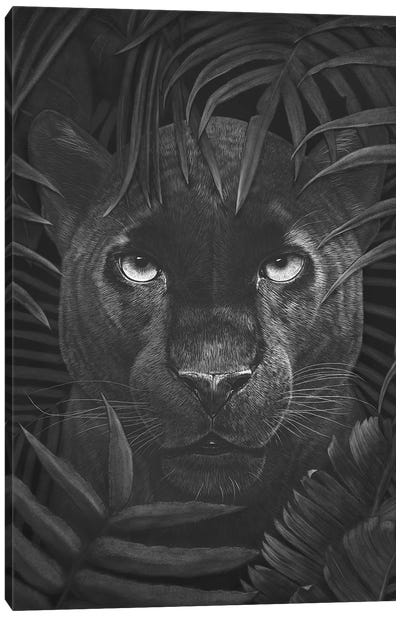 Panther In Jungle Canvas Art Print