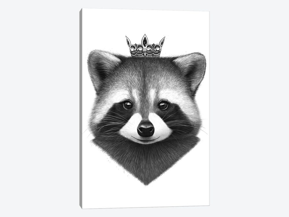 Queen Raccoon by Valeriya Korenkova 1-piece Canvas Art Print