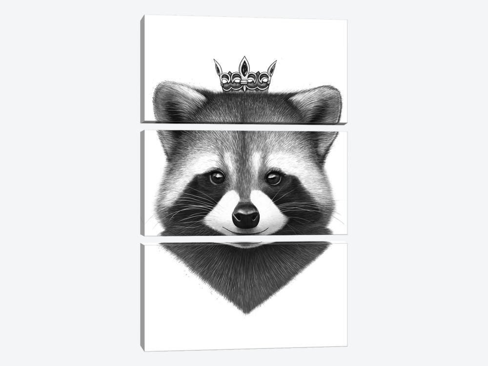 Queen Raccoon by Valeriya Korenkova 3-piece Canvas Art Print