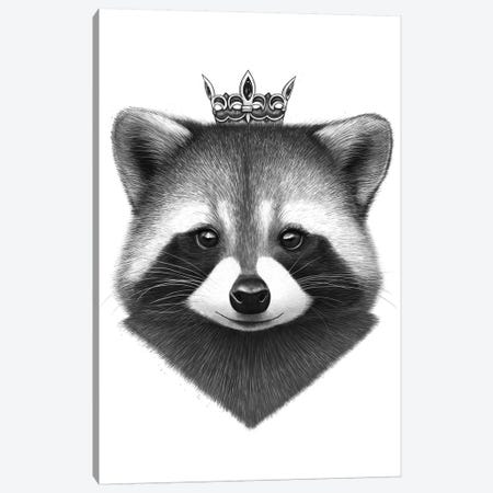 Queen Raccoon Canvas Print #VAK52} by Valeriya Korenkova Canvas Art