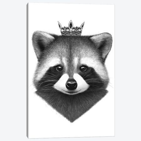 Queen Raccoon Canvas Print #VAK52} by Valeriya Korenkova Canvas Art