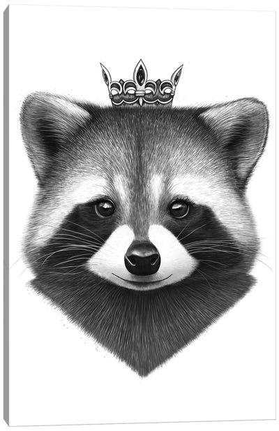 Queen Raccoon Canvas Art Print