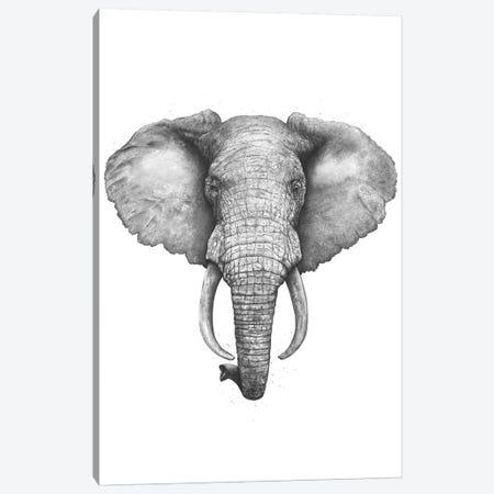 The Elephant Canvas Print #VAK56} by Valeriya Korenkova Canvas Art Print
