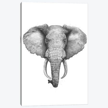 The Elephant Canvas Print #VAK56} by Valeriya Korenkova Canvas Art Print