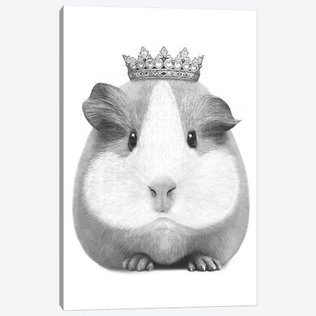 The Guinea Queen Canvas Print #VAK57} by Valeriya Korenkova Canvas Art Print