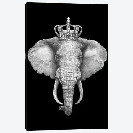 The King Elephant On Black Canvas Print #VAK58} by Valeriya Korenkova Canvas Wall Art
