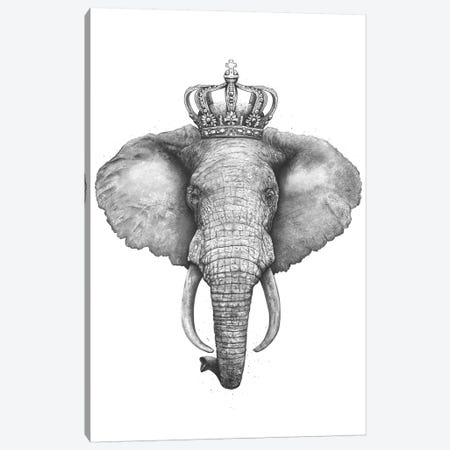 The King Elephant Canvas Print #VAK59} by Valeriya Korenkova Canvas Artwork