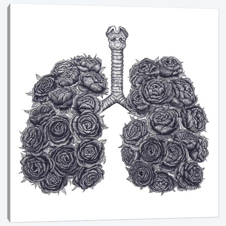 Lungs With Peonies Canvas Print #VAK5} by Valeriya Korenkova Canvas Art Print