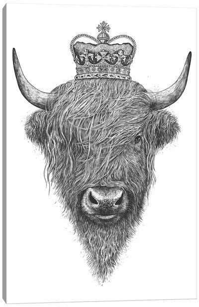 The King Highland Cow Canvas Art Print