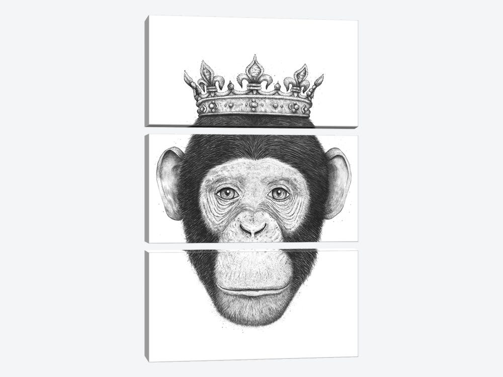 The King Monkey by Valeriya Korenkova 3-piece Canvas Print