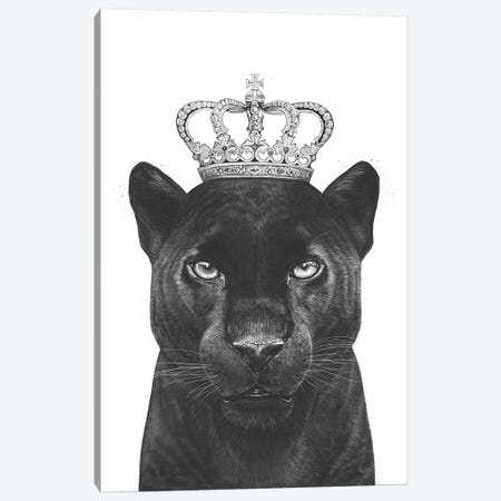 The King Panther Canvas Print #VAK64} by Valeriya Korenkova Canvas Art
