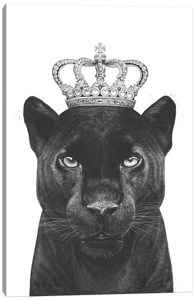 The King Panther Canvas Art Print